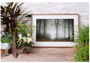 eco-friendly framing